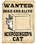 The theory of Schroedinger's cat - both dead and alive