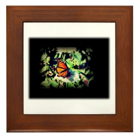 Monarch Butterfly and Zinnia Framed Tile