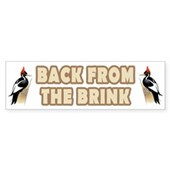 IBWO: Back from the Brink Bumper Sticker