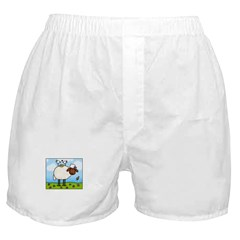 Spring Sheep Boxer Shorts