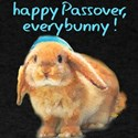 happy-Passover.png T-Shirt