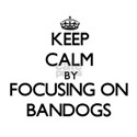 Keep calm by focusing on Bandogs T-Shirt