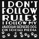 I Follow My Anatolian Shepherd Dog T-Shirt
