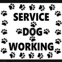 SERVICE DOG WORKING T-Shirt